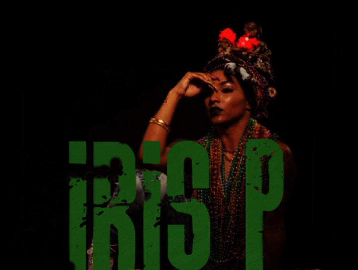 Cropped-irisP6